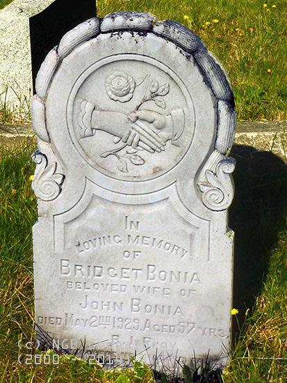 bonia-bridget-1929-n-hbr-rc-psm
