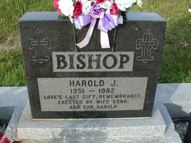 BISHOP, Harold J (1982) STM03-9507