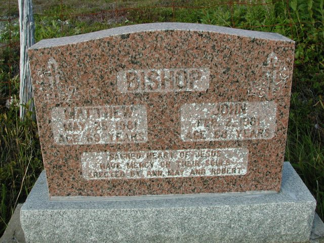 BISHOP, Matthew (1981) & John (1981) STM03-9483