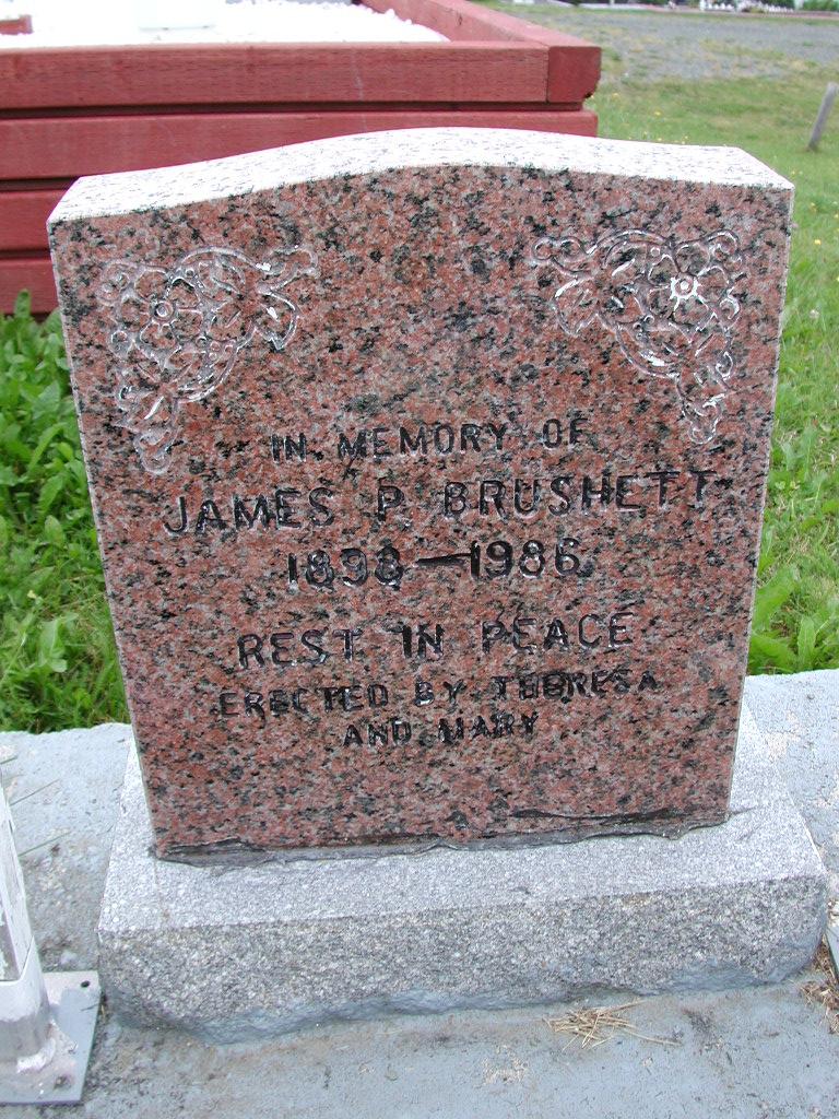 BRUSHETT, James P (1986) SJP01-7422