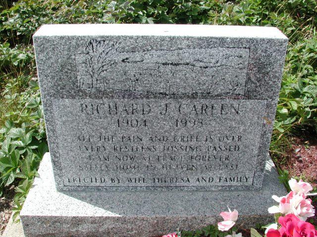 CAREEN, Richard J (1993) PLN01-3077