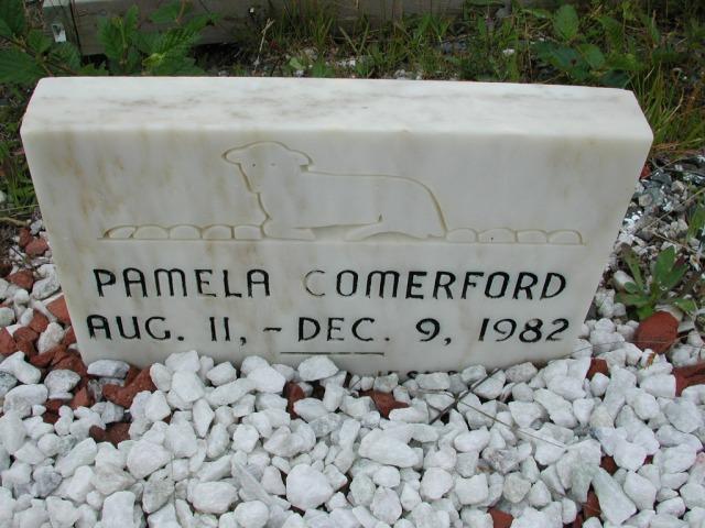 COMERFORD, Pamela (1982) ODN02-7749