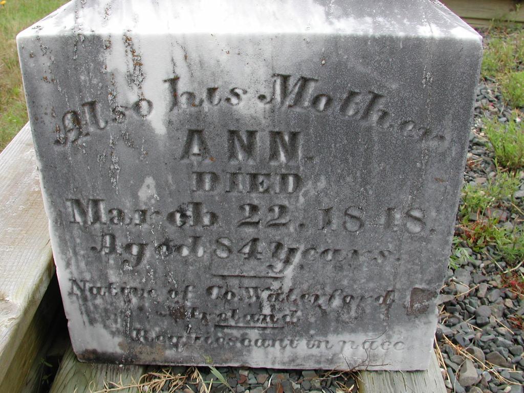 CURTIS, Ann (1848) SJP01-7536