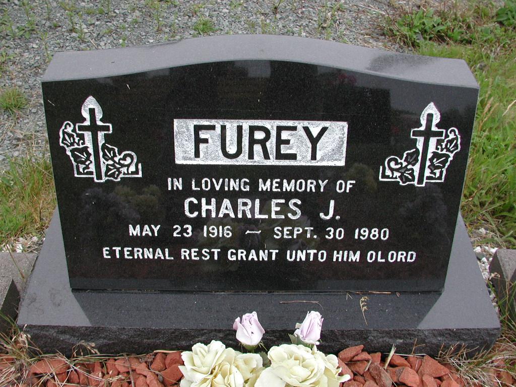 FUREY, Charles J (1980) SJP01-7375