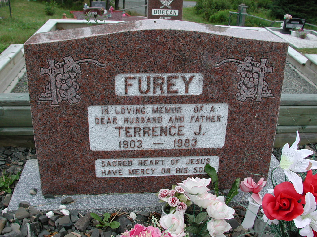 FUREY, Terrence J (1983) SJP01-1701