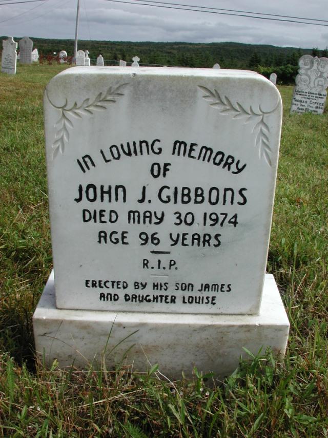 GIBBONS, John J (1974) STM01-2415