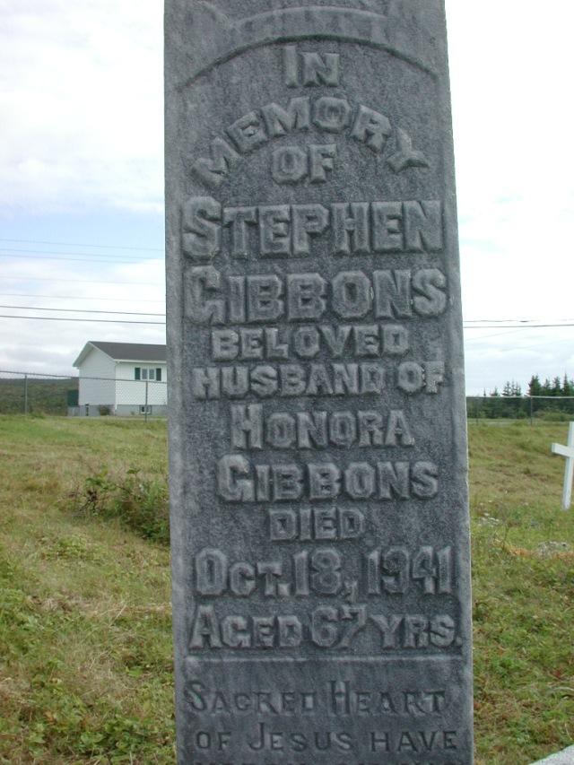 GIBBONS, Stephen (1941) STM01-2450