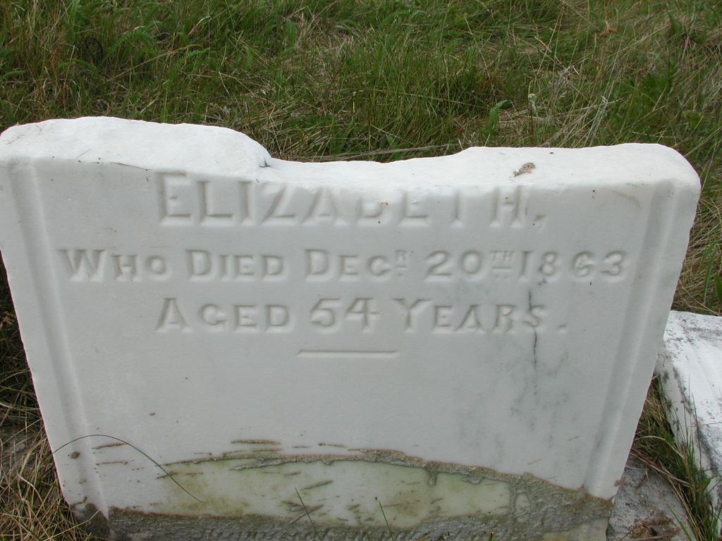 LINEHAN, Elizabeth (1863) SJP01-7677