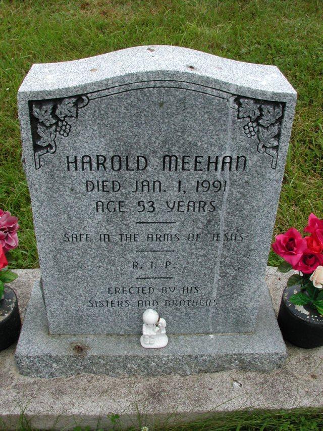 MEEHAN, Harold (1991) STM01-8078