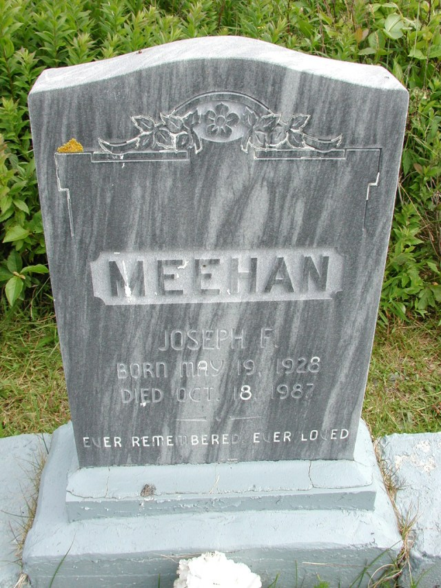 MEEHAN, Joseph F (1987) STM01-8307
