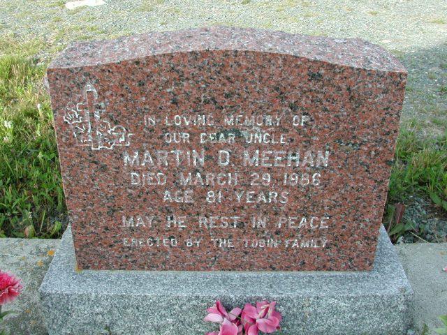 MEEHAN, Martin D (1986) STM03-9408