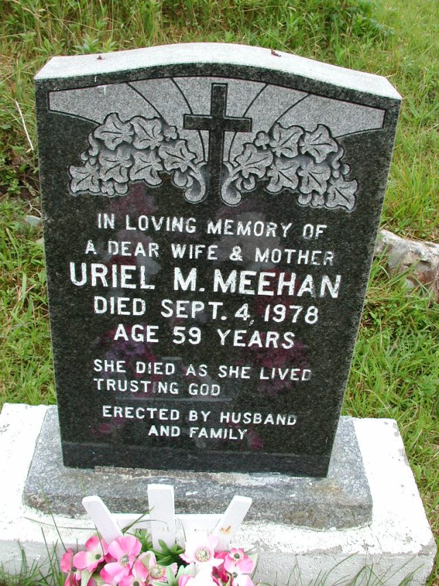 MEEHAN, Uriel M (1978) STM01-8091