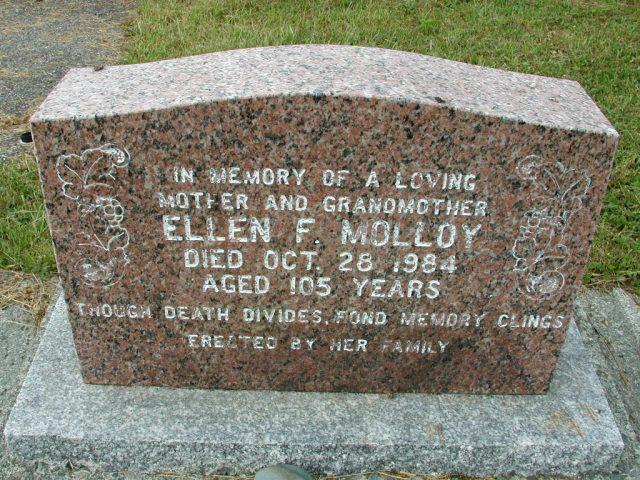 MOLLOY, Ellen F (1984) SSH01-9025