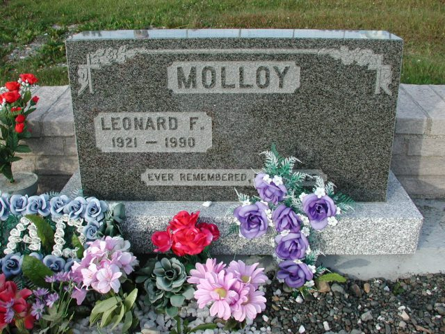 MOLLOY, Leonard F (1990) STM03-3733