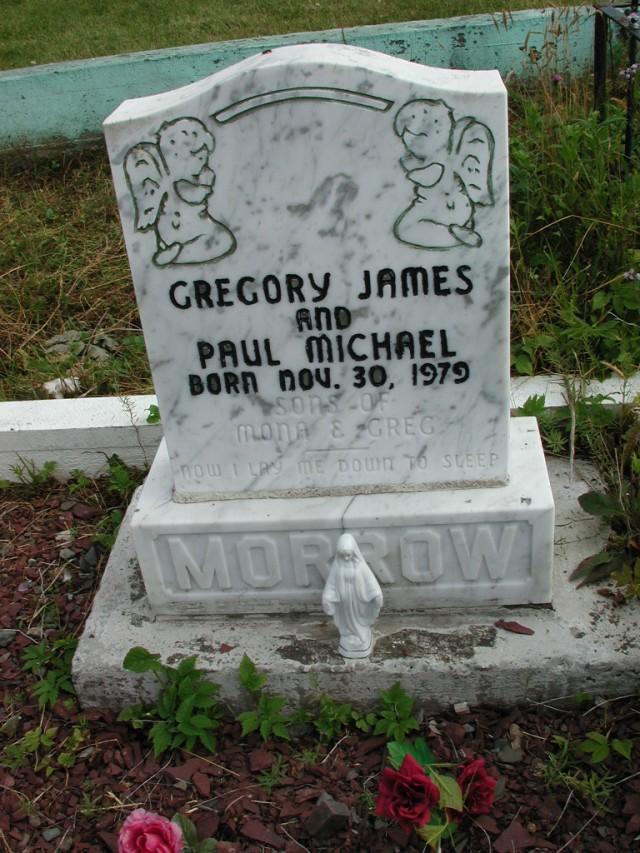 MORROW, Gregory James (1979) & Paul Michael STM01-2499