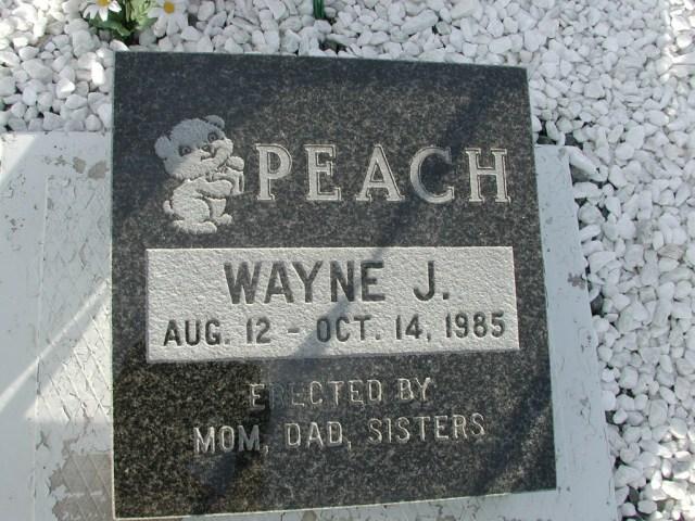 PEACH, Wayne J (1985) STM03-9430