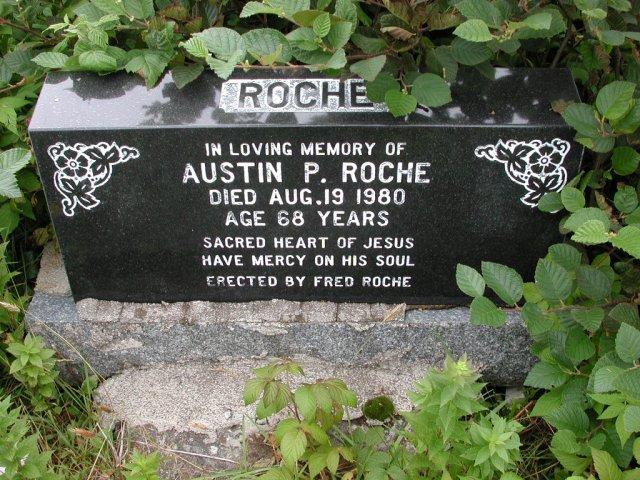 ROCHE, Austin P (1980) BRA01-3119