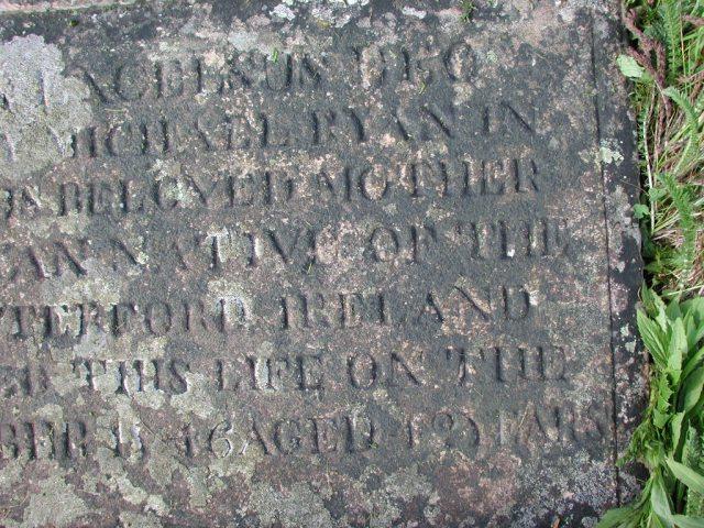 RYAN, Bridget (1846) STM02-2549