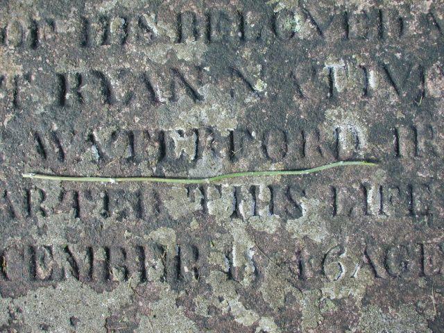 RYAN, Bridget (1846) STM02-2553