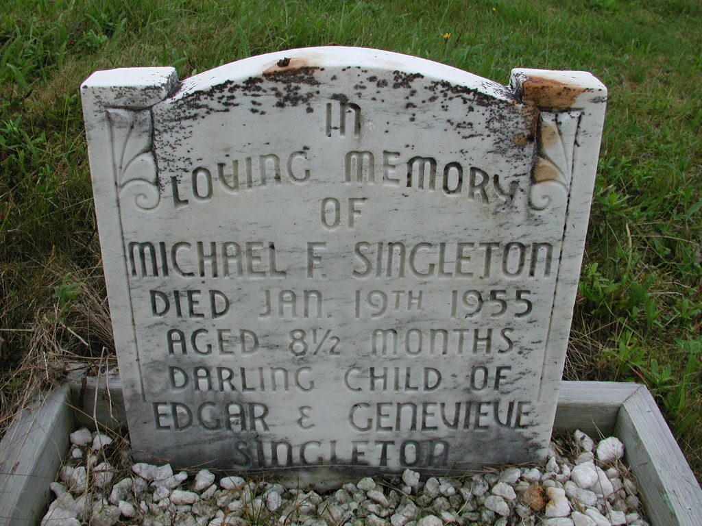 SINGLETON, Michael F (1955) SJP01-7514