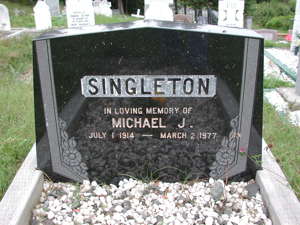 SINGLETON, Michael J (1977) SJP01-1704
