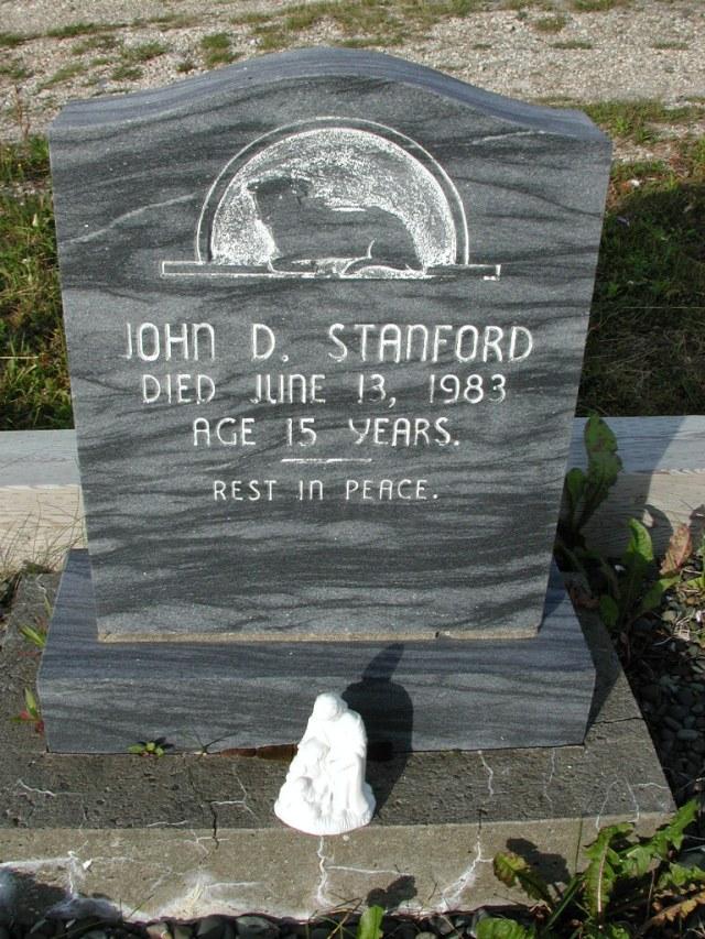 STANFORD, John D (1983) STM03-9436