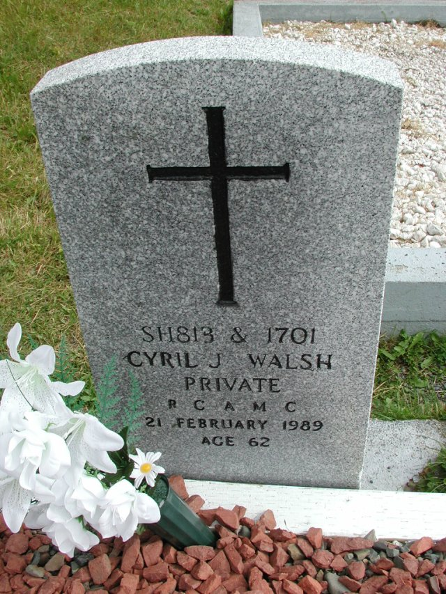 WALSH, Cyril J (1989) STM01-8295