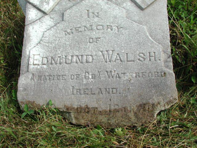 WALSH, Edmund (189x) STM01-2388