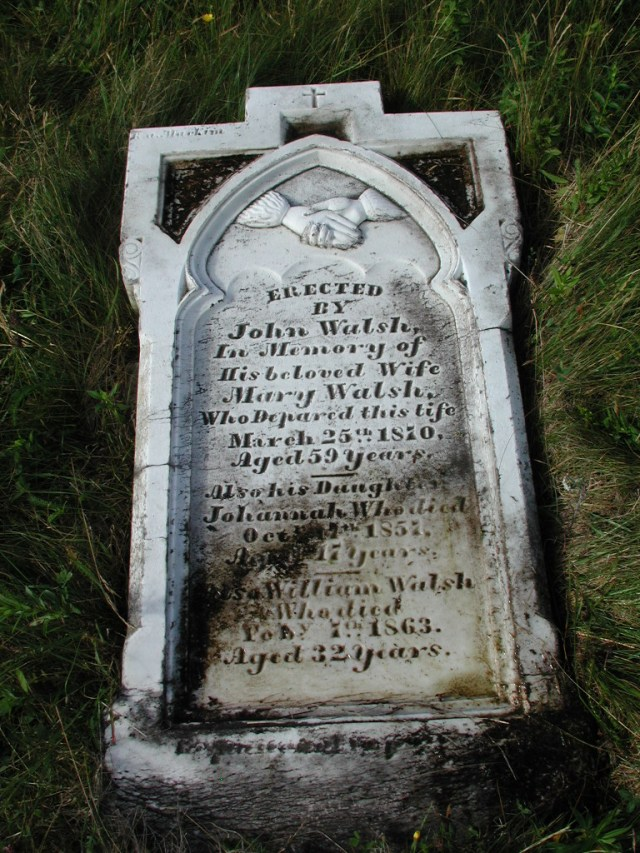 WALSH, Mary (1870) & Johannah & William STM02-2559