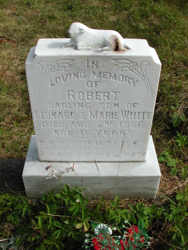 WHITE, Robert (1966) STM01-8236