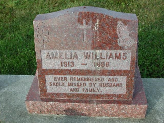 WILLIAMS, Amelia (1988) STM03-3713