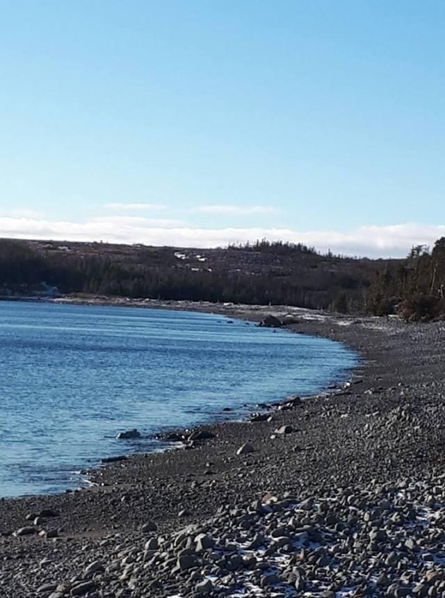 Cape dog beach