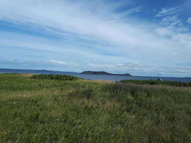 Colinet Island 2