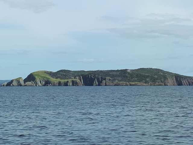 Colinet Island 3