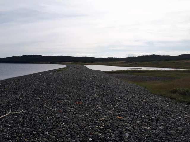 Colinet Island - Regina