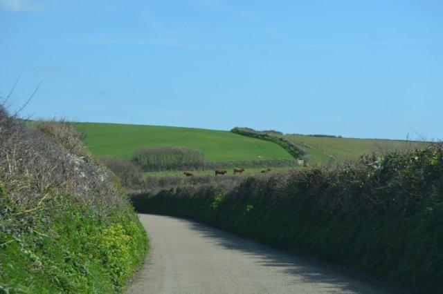 Roads in Cornwall 2