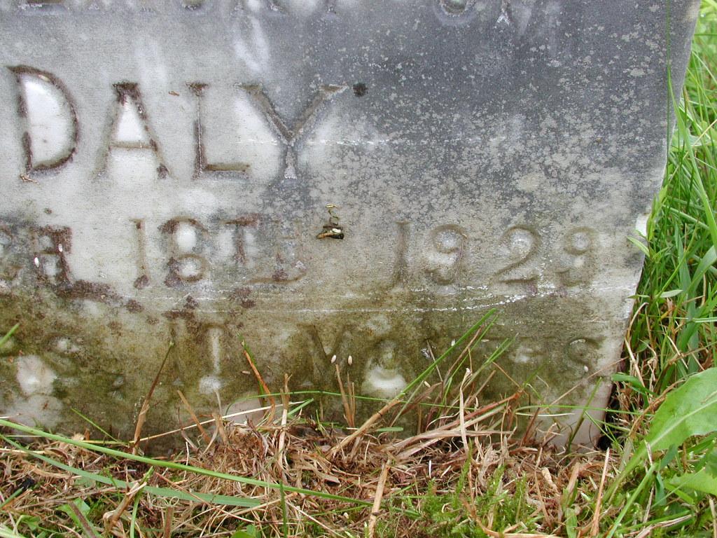 DALY, Edna (1929) RIV01-7984