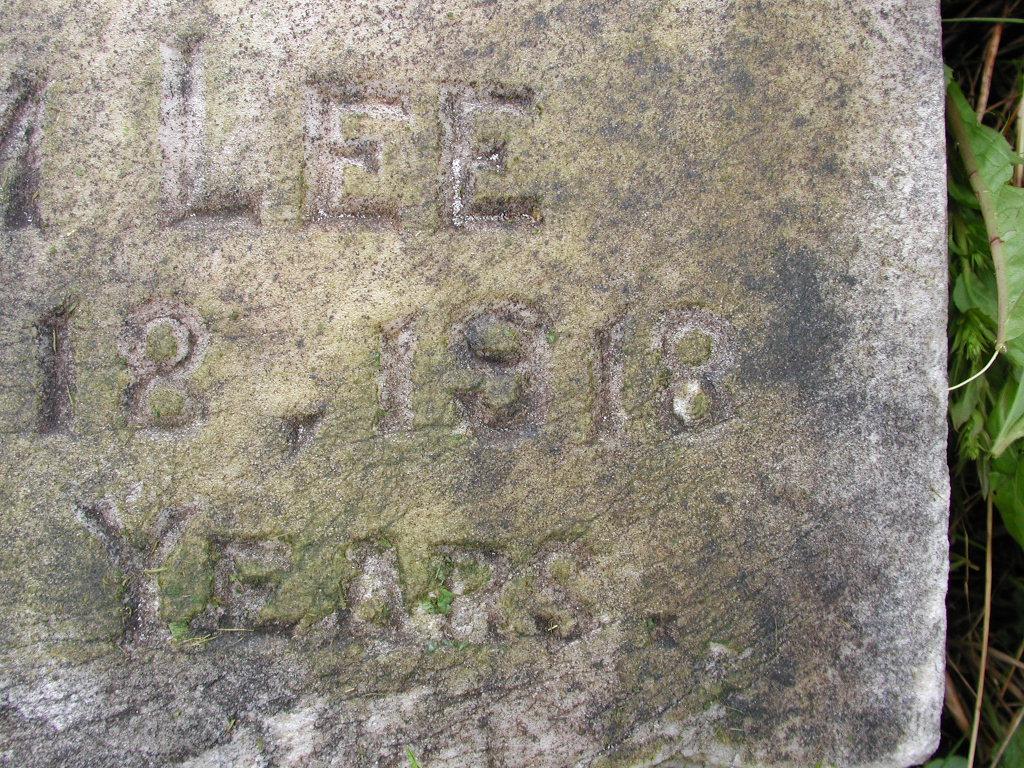 LEE, Elle (1918) RIV01-7878