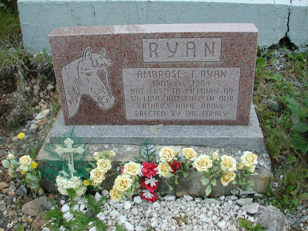 RYAN, Ambrose J (1984) RIV01-2207