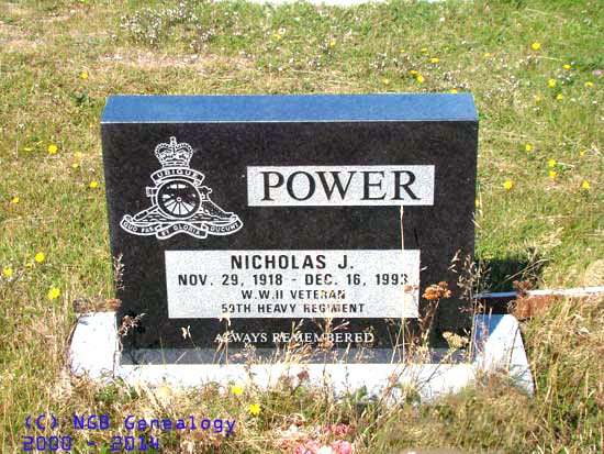 power-nicholas-1993-branch-new-rc-psm