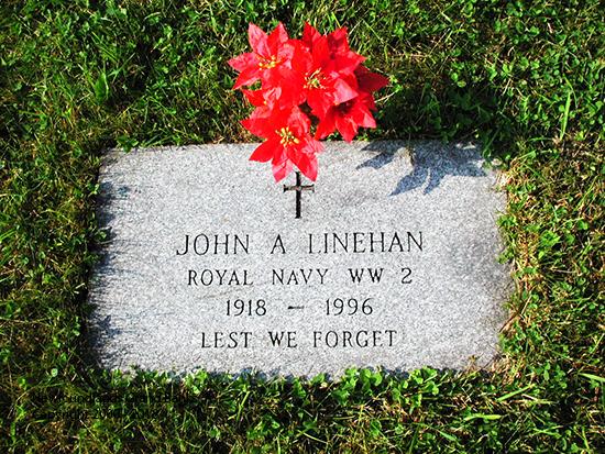 linehan-john-reg-2-1996-colinet-rc-psm